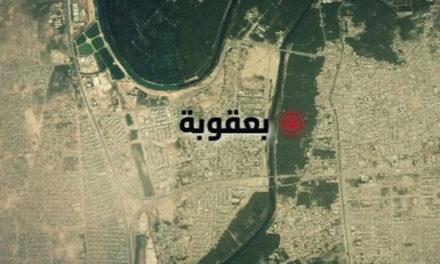 اللاعنف العالمية تدين التفجيرات الاجرامية التي استهدفت المدنيين في بعقوبة وبغداد