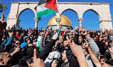 اللاعنف العالمية تطالب بتفعيل مقررات قمة التعاون الإسلامي حول القدس