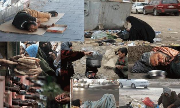 المسلم الحر تدعي الدول العربية والإسلامية الى رسم خطط تنمية الأسر وتحسين أوضاعها المعيشية