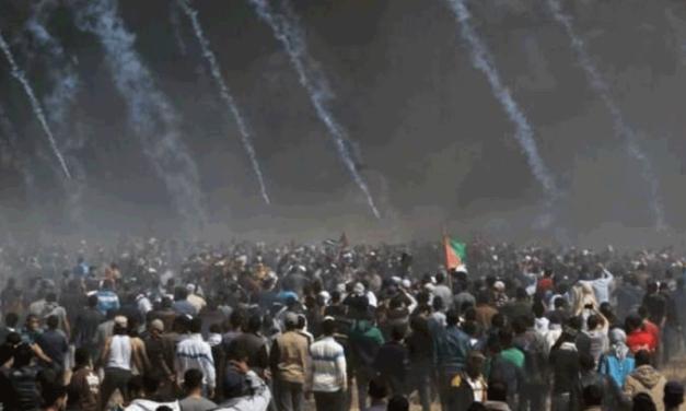 اللاعنف العالمية تدين المجزرة الإسرائيلية وتدعو الى حل عادل للقضية الفلسطينية