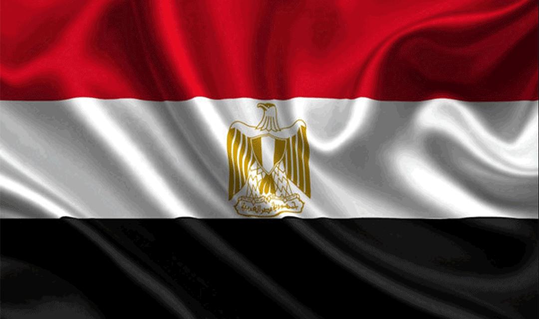اللاعنف العالمية تحذر من تداعيات سياسة السلطة في مصر