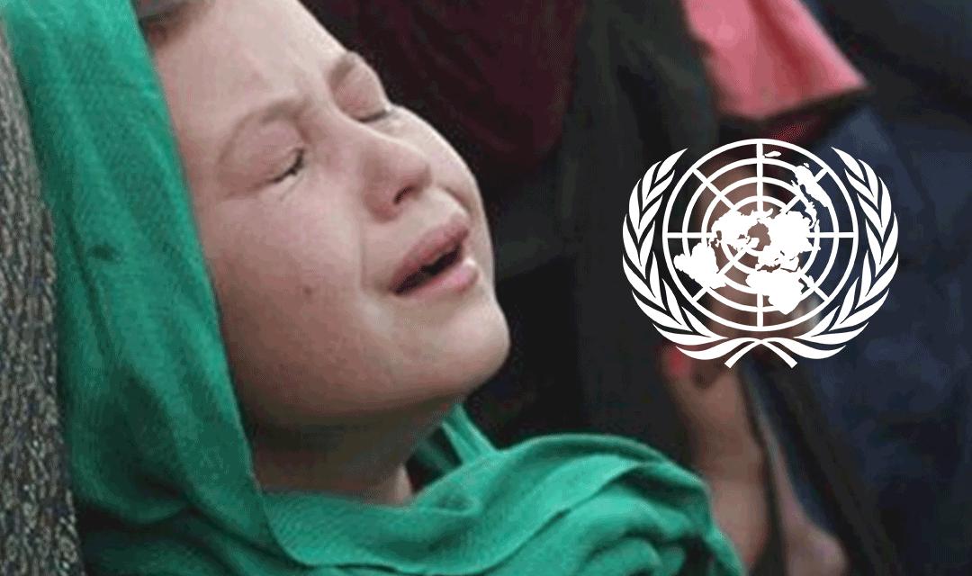 اللاعنف العالمية تحذر من مجزرة وشيكة بحق شيعة أفغانستان
