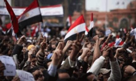 اللاعنف العالمية تدعو السلطات المصرية الى وقف عمليات الاعتقال بحق المعارضين السلميين