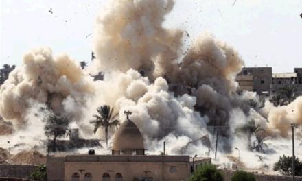 اللاعنف العالمية تدعو السلطات المصرية لتقصي الحقائق حول من يتم استهدافهم في سيناء