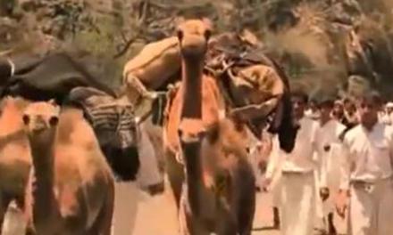 مجزرة تنومة المروعه التي ارتكبها جنود آل سعود بحق 3000 من الحجاج اليمنيين عام 1923م