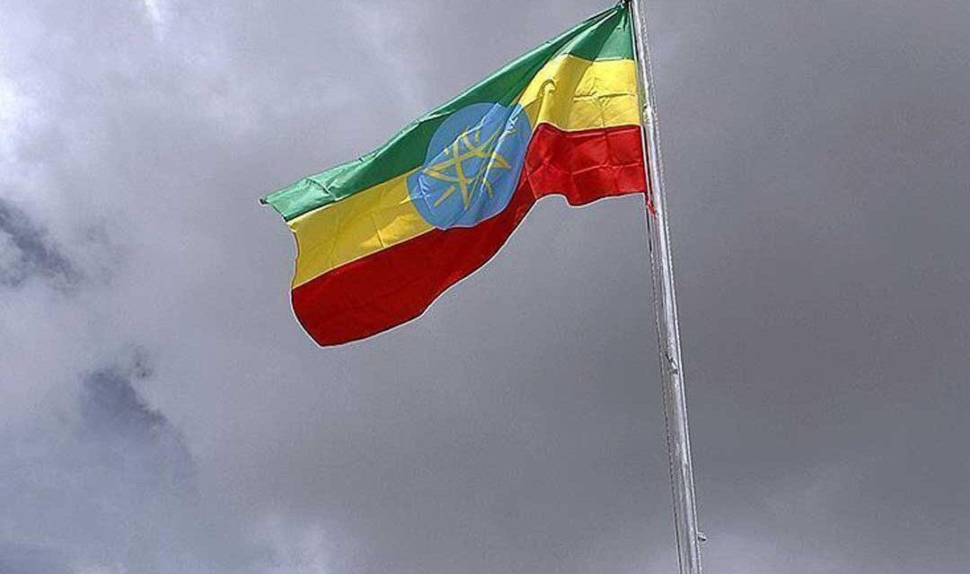 منظمة اللاعنف العالمية تطالب السلطات الاثيوبية بمعالجة المشاكل سلمياً