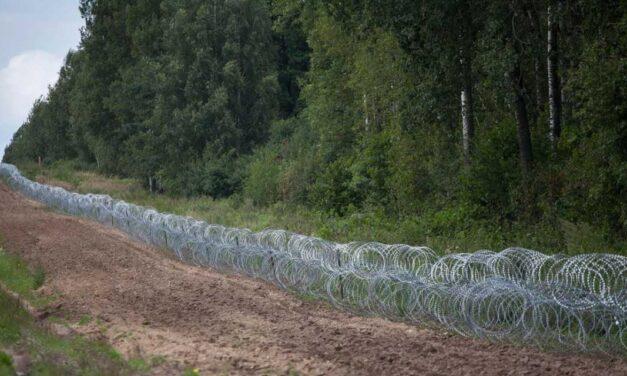 منظمة اللاعنف العالمية تدعو إلى وقف معاناة اللاجئين
