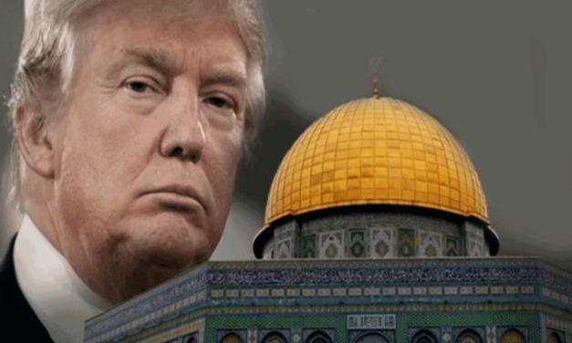 سازمان جهانی نفی خشونت: مصوبه ی ترامپ، عملیات صلح را زنده به گور و امنیت جهانی را دستخوش بی ثباتی و تزلزل کرد