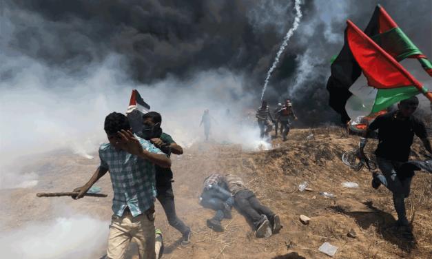 سازمان جهانی نفی خشونت: قتل عام فلسطینیان به دست صهیونیست ها محکوم است و باید برای مسأله فلسطین راه حل عادلانه ای اتخاذ کرد