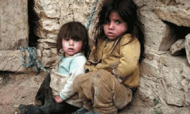 سازمان جهانی نفی خشونت: رخدادهای یمن تحمل نشدنی است