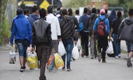 هشدار سازمان جهانی نفی خشونت به دولت سریلانکا به جهت اخراج پناهندگان مسلمان از این کشور