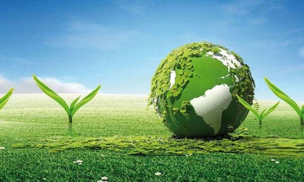پیام سازمان جهانی نفی خشونت به مناسبت روز جهانی محیط زیست
