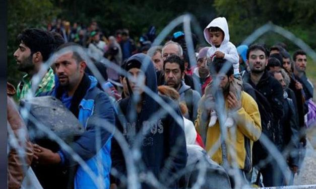سازمان جهانی نفی خشونت: از حقوق پناهجویان باید صیانت شود