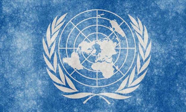 سازمان جهانی نفی خشونت: سازمان ملل متحد از همراهی سیاسی یونان و ترکیه در برخورد با پناهجویان ممانعت کند