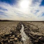 پیام سازمان جهانی نفی خشونت به مناسبت روز جهانی مبارزه با بیابان زایی و خشکسالی