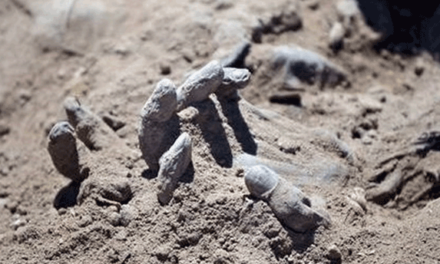 Death Tolls Rise as More Mass Graves are Found