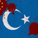 East Turkestan Occupation