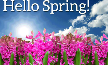 Inclusion Forum's Statement for Arrival of Spring