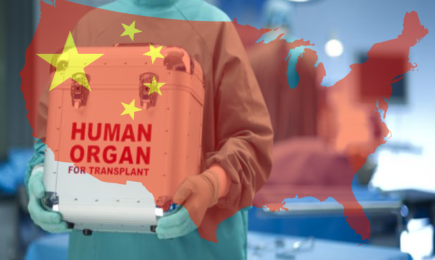 Organ Harvesting in China