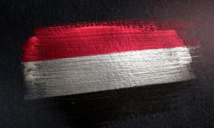 Halt of War in Yemen
